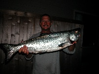 Perry's King Salmon