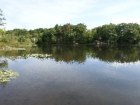 South Meadow Pond