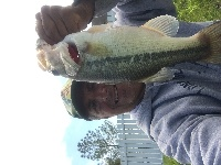 RETENTION POND BASS 3