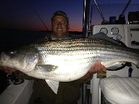 Maryland Rockfish