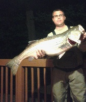 "35"" 16 pound 3 ounce striper May 2015"