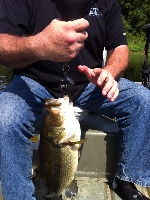 Hubby's 4 1/2 lber