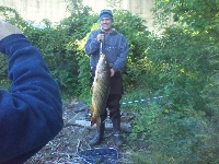 "Muskie Adventure Tours ""Carping for Gold CT River"""