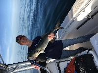 My bluefish, 33 inches