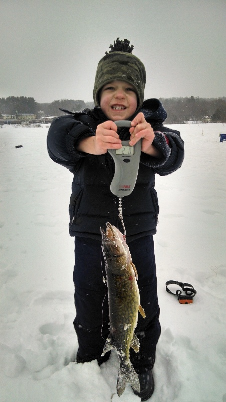 He got this 2 pound pickerel ALL BY HIMSELF