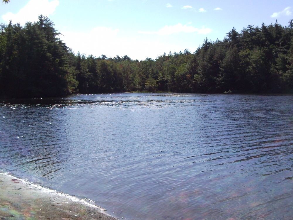 One of many shore spots to fish on the campground