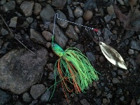 My favorite lure 2009 season