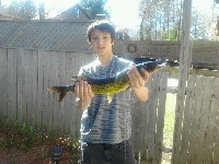 biggest pickerel