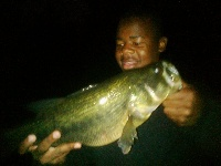 night time bassin