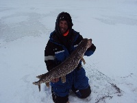 PIKE 37 IN 14.5