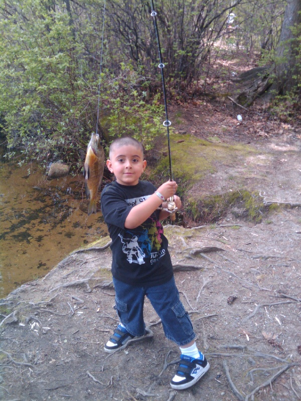 My son Hector's catches