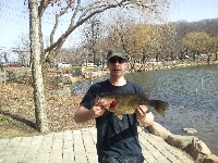 another nyc bass